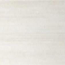 Кипарис белый